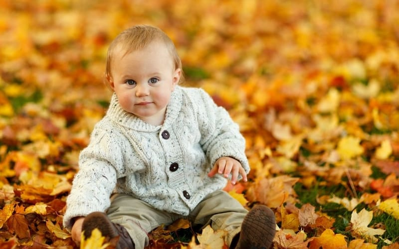 baby in leaves small